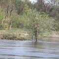 PZK #pzk #widok #polska #zielone #drzewo #qrz