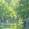 #natura #przyroda #rzeka #Warta