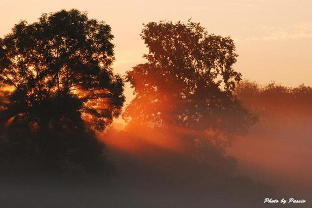 #wschód #słońce #pole #łąka