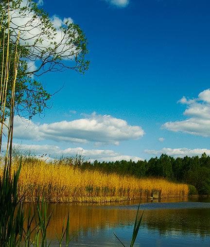 #jezioro #Kolbuszowa #skansen #niebo #chmury