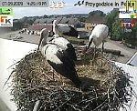 http://images44.fotosik.pl/160/d203d3baed31f843m.jpg