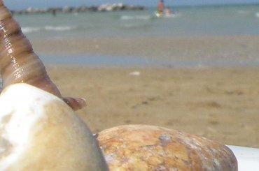 skarby morza