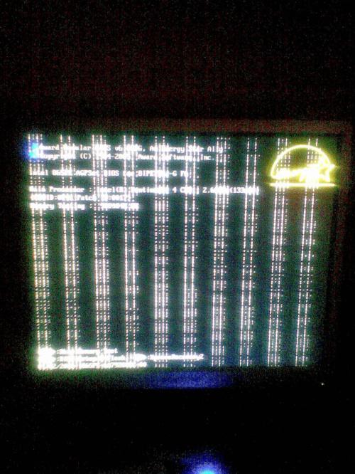 f38ac9ff1df9535amed.jpg