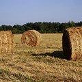trójkąt bermudzki.. ;D #rolnictwo #słoma #ściernisko