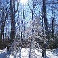 zima #zima #przyroda #snieg