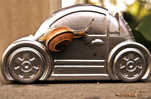 Wszystkiego na tym kursie nauczyli... manewry, parkowanie, zawracanie.... ale jak wsiadać, to nikt nie powiedział... !!!!