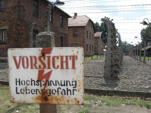 Auschwitz fot. Michał Tyrpa