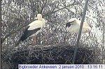 http://images44.fotosik.pl/243/a94a6f4c0fc86629m.jpg