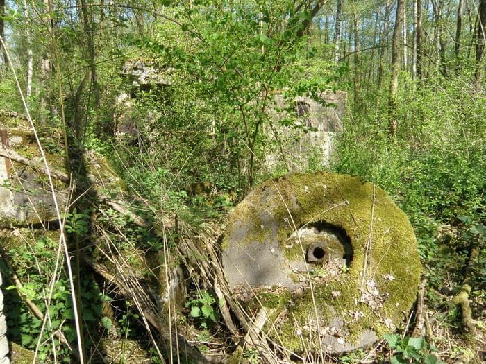 Ruiny młyna papierniczego w Rosiejewie- Papier und Zelullosenfabrik  Pulverkrug 623d03ebf61f2799