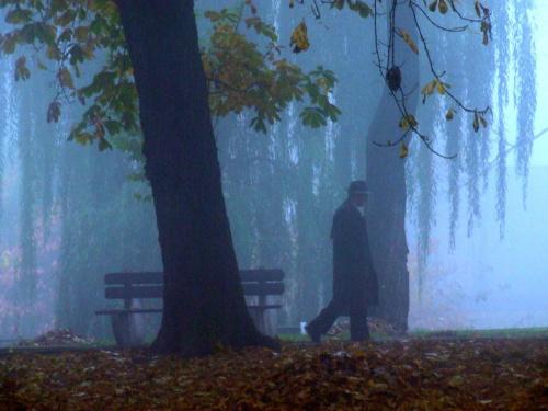 bliscy odchodzą w mgłę nieznanego