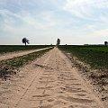 Po piachu,pod górkę i pod wiatr...sama radość:) #Polska #drogi #pola