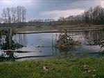 images44.fotosik.pl/291/53b326d191337b4fm.jpg