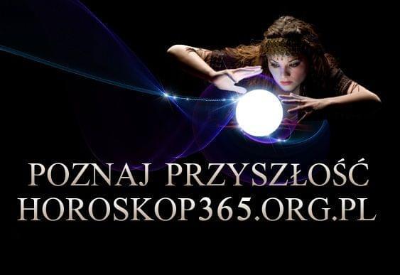 Tarot Gorzow #TarotGorzow #haft #koty #doda #ciekawe #pkp