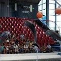 Delfinarium w Varnie #Varna #Warna #delfinarium #Bułgaria