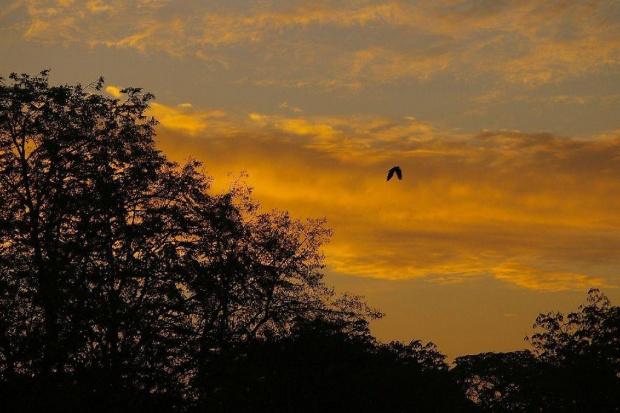 wschody i zachody słońca #chmura #promyk