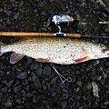 #czupak #muckno #szaman #jezioro #irlandia #lake #spininng