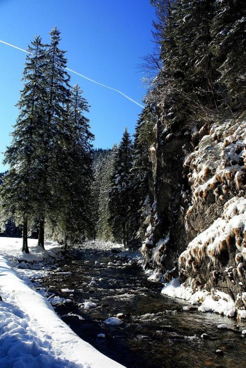 Dolina Kościeliska #TatryZimaKościeliskaZakopane