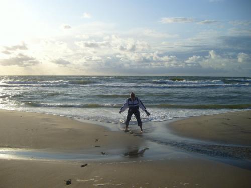 Polskie morze #natura #przyroda #zwierzęta