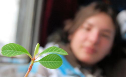 Mój nowy kwaituszek :) Wiem wiem ostrość ;/ teraz już będe wiedzieć :P ucze się na błędach. A w tle moja pani instruktor :D schneeflocke #kwiatek #schneeflocke